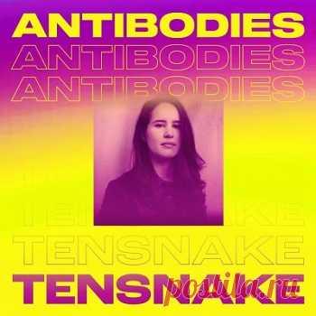 Tensnake - Antibodies free download mp3 music 320kbps
