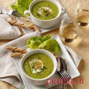 Суп из шпината с яйцом - Суп-пюре от 1001 ЕДА