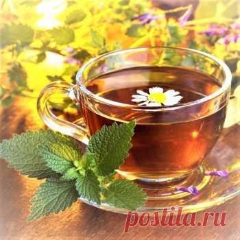 """ЧАЙнное омоложение ( Зеленый чай ) Врач китайской династии Хань (206 г. до н.э. - 220 г. н.э.) Хуа То в трактате """"О пище"""" писал, что если пить бирюзовый чай улун постоянно, то он не только утоляет жажду и тонизирует, но и лечит: улучшает зрение, укрепляет память, снимает усталость, препятствует отложению жира в организме. Хуа То настаивал, что человек ни дня не должен прожить без зеленого, а лучше бирюзового чая. Подробнее на нашем сайте ..."""