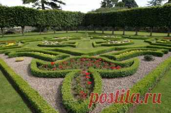 Топиарии для сада своими руками - Будь в курсе