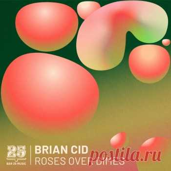 Brian Cid - Roses Over Dimes free download mp3 music 320kbps