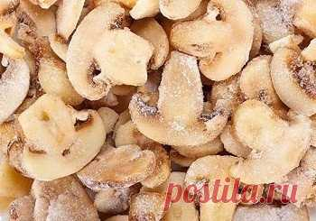 Как приготовить заморозка грибов на зиму - рецепт, ингредиенты и фотографии