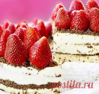 Самый вкусный торт без выпечки из простых продуктов / Торты / TVCook: пошаговые рецепты с фото