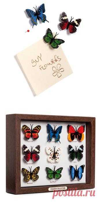 Веселые кнопки в форме бабочек скрасят офисную рутину