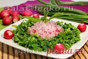 Фото рецепт весеннего салата из крапивы с черемшой, щавелем и редисом