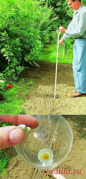 Как своими руками сделать устройство для посадки семян. .