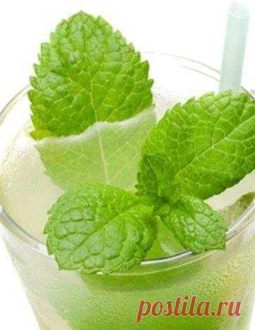 Яблочно-мятный коктейль