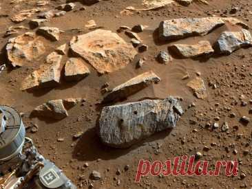 Камни на Марсе, которые собрал Perseverance, находились в пригодной для жизни среде