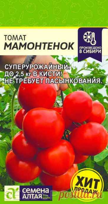 Томат Мамонтенок, 5 шт. Произведено в Сибири, купить в интернет магазине Seedspost.ru