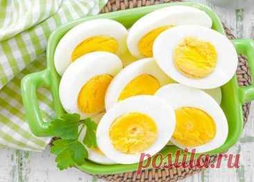 Ученые рассказали, в каком виде яйца наиболее полезны для здоровья — Ferra.ru