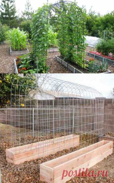 15 удобных и простых опор для огурцов Опоры для огурцов всегда приходят на помощь садоводам. Перед вам 15 креативных решения для большей урожайности и удобства, может быть какие-то из них возьмете на...