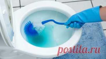 7 секретов для свежего запаха в туалете и ванной 1. Тщательно промойте под креплениями туалетного сиденья Найдите возможность снять сиденье и... Читай дальше на сайте. Жми подробнее ➡