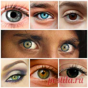 Тест: характер человека по цвету его глаз С древнейших времен проницательные люди знали, что о человеке много можно узнать, понаблюдав за его жестами, речью, одеждой. Но когда Читай дальше на сайте. Жми подробнее ➡