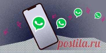 10 полезных советов для каждого пользователя WhatsApp - Лайфхакер