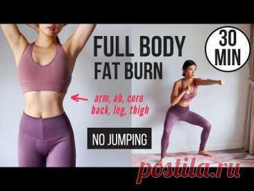 30 min Full Body Fat Burn HIIT (NO JUMPING) - Ab, Core, Arm, Back, Leg, Thigh & Cardio ~ Emi - YouTube