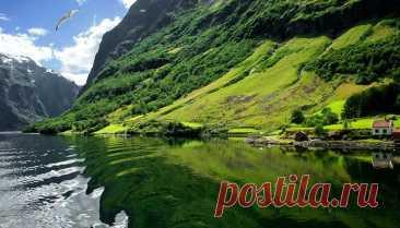 Самые красивые фьорды Норвегии. Согнефьорд Фьорды Норвегии — эти величественные горные заливы — уникальный природный феномен, который никого не оставляет равнодушным. Фьорды, расположенные в северной части западного побережья Норвегии, сформировались во время последнего ледникового периода 10-12 тысяч лет назад при отходе ледника. Слово «фьорд» в переводе с норвежского означает «залив».Каждый фьорд имеет свои особенности и достопримечательности. Мы собрали самые красивые и...