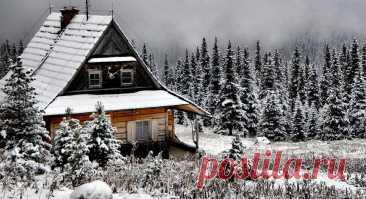 Что нужно забрать домой на зиму с дачи и почему   Огородники