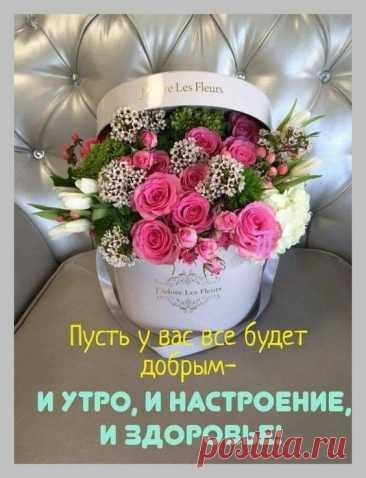 Тщательно отобранная коллекция поздравлений на известные (и не очень) праздники и даты. Выбирайте в альбомах https://vk.com/@aleksander_kirichenko-katalog-albomov-chto-est-segodnya