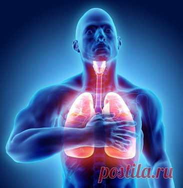 Антистрессовый дыхательный комплекс: 10 упражнений, которые вернут спокойствие