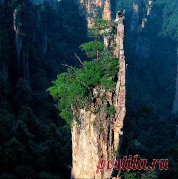 Удивительная природа Китая