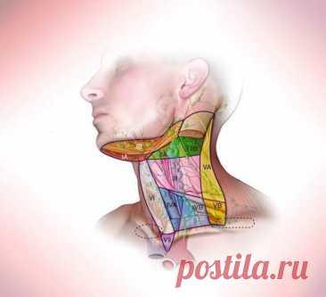 Мышечные зажимы шеи и головы, которые не дают нормально жить - Народная медицина - медиаплатформа МирТесен Мышечные зажимы в теле формируются по разным причинам. Здесь сочетаются факторы и физического, и психологического плана.Зажимы мышц головы и шеи ухудшают качество жизни и могут доставлять своему владельцу физический дискомфорт. Как избавиться от этих блоков? На первый взгляд может показаться, что