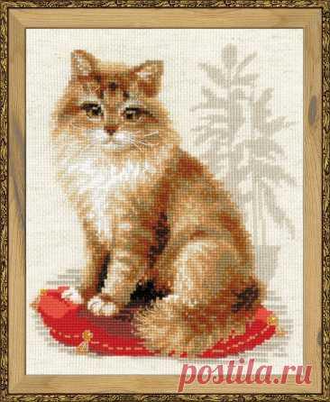 Кошка домашняя (арт.1525 Риолис) купить в Stitch и Крестик