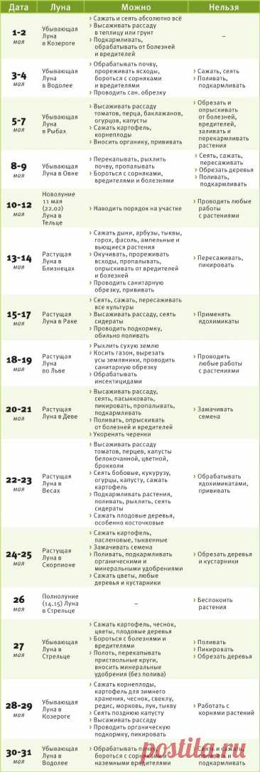 Лунный календарь дачника на май - Блог «Садовод» - MySlo.ru