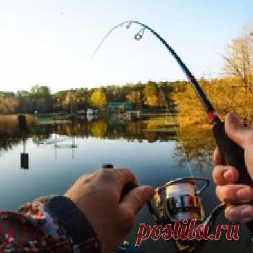 Рыбалка и все хитрости рыбалки Здесь вы можете добавлять свои трафеи , отчёты о рыбалке,