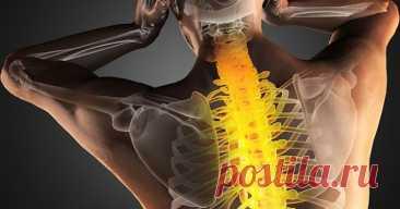 Жалобы при болях отдельных позвоночников и что это означает - Образованная Сова Первый шейный позвонок (С 1, атлант): Головные боли, мигрень, ослабление памяти, хроническая усталость, головокружение, артериальная гипертензия, недостаточность мозгового кровообращения. Второй шейный позвонок (С 2, осевой позвонок) ……читать далее Воспалительные и застойные явления в придаточных пазухах носа, боли в области глаз, ослабление слуха, боли в ушах. Третий шейный позвонок (С З) Лице...