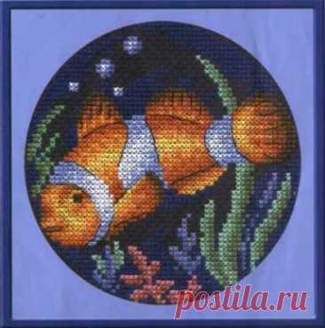 схема для вышивки крестом Рыбка - клоун