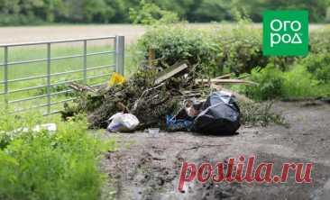 Как избавиться от мусора на участке, не нарушая закона | Полезно (Огород.ru)
