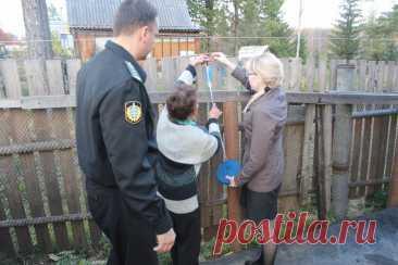 Забор с соседями по даче: каким он должен быть