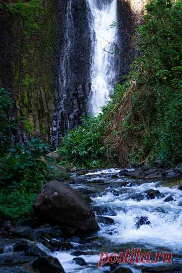Водопад в Коста-Рика фото. Красивейшие места мира фото с названиями. #природафото #водопады #красивыеместа #путешествие