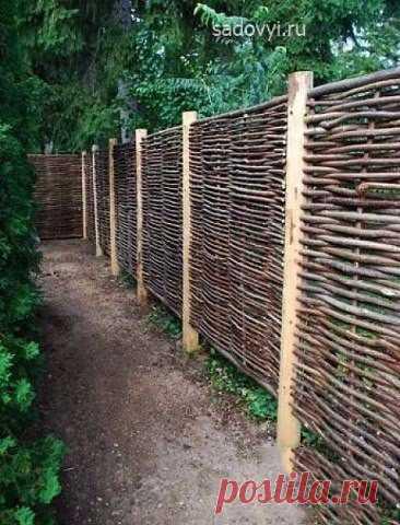 Как сплести забор из прутьев на даче своими руками Как сплести забор из прутьев на даче своими рукамиТакой забор дешевле и красивее, чем из железа или пластика.И служит очень долго.
