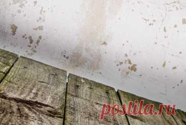 Старый пол из досок: как обновить - каталог статей на сайте - ДомСтрой Старый пол из досок: как обновить ➜ собрание интересных и полезных идей на сайте ★ДомСтрой★