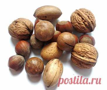 Что произойдет с организмом, если есть орехи каждый день - Мужской журнал JK Men's Орехи встречаются во многих блюдах и продуктах в самом разном виде, но при этом их вкус и полезные свойства отличаются,