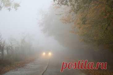 Как правильно ездить на автомобиле в туман