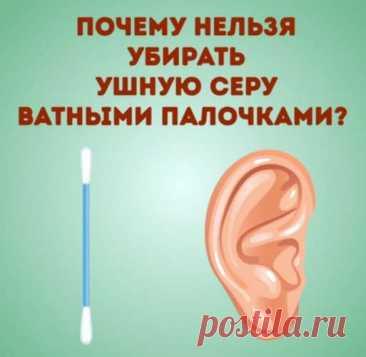 Почему нельзя чистить уши ватными палочками