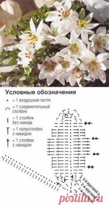 Вязаные цветы. Как связать лилию крючом. Лилия на салфетках, в букете, на воротничке и тунике   NataliyaK   Яндекс Дзен