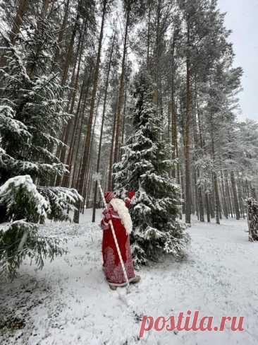 Первый снег выпал у Деда Мороза в Великом Устюге