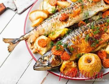 Готовим скумбрию в духовке: 5 лучших рецептов. Кулинарные статьи и лайфхаки