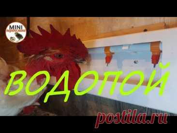Изготовление универсальной поилки для кур. Мастеркласс.