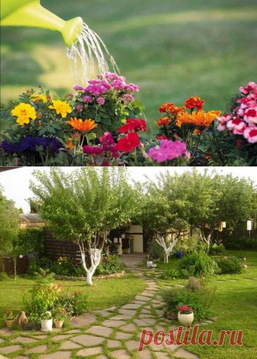 Чем заняться на даче в мае? План работ для садоводов: рекомендации и фото | Florets.ru