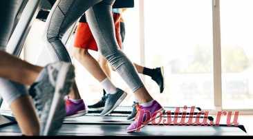 Виды кардиотренировок для женщин – «Будь в форме»