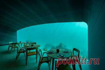 Ресторан под водой Under. - DYNASTY OF CHEFS На юге Норвегии, в коммуне Линдеснес, открылся первый в Европе и самый большой в мире подводный ресторан Under. ⠀ Внешне