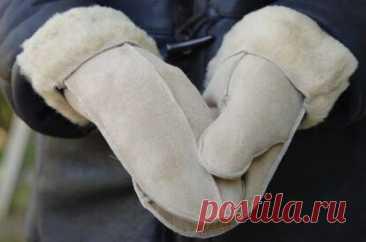 Выкройка рукавиц на все случаи жизни