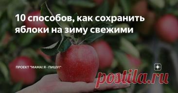 10 способов, как сохранить яблоки на зиму свежими