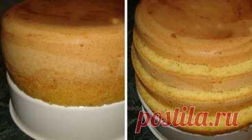 Самый простой рецепт бисквита Такого высоченного бисквита у меня ещё не получалось! Получается высокий, пышный корж, из которого можно соорудить большущий торт на всю семью! Рецепт на сайте: https://gotovchik.ru/samyj-prostoj-recept-biskvita.html?utm_source=vipec&utm_campaign=desserts