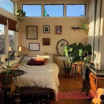 6 идеальных комнатных растений для спальни | kitchendecorium.ru | Пульс Mail.ru
