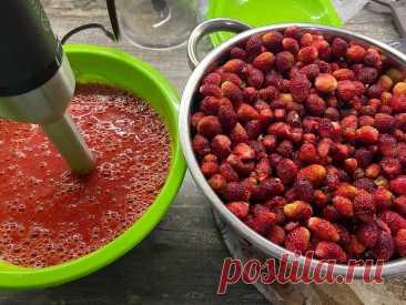 Перерабатываю килограммы ягод на зиму за 10 минут. Без банок, сахара и стереллизации. Вкуснее любого варенья. Видео | Будни обычной женщины | Яндекс Дзен